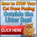 Cat Spraying No More - Brand New With A 16.2% Conversion Rate!